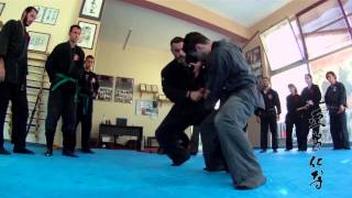 XIX SUMMER CAMP BUJINKAN GREECE NINPO TAIJUTSU 2014 with ANTONIS MITROU