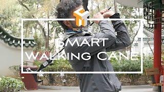 Smart Walking Cane