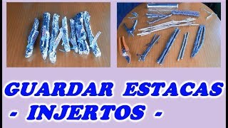 Como Guardar,Almacenar o Conservar Las Estaquillas Para Hacer Injertos // Save cuttings for grafting