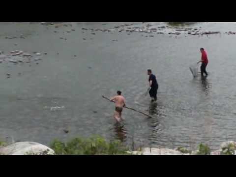 Ловля карпа (хохма)