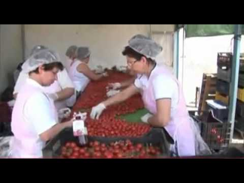 SIAFT 4 - Southern Italy Agri Food Tourism