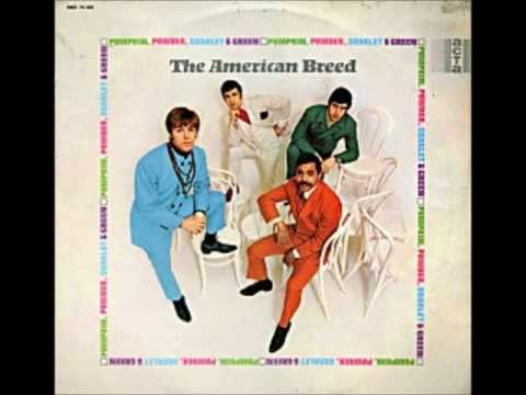 The American Breed - Anyway That You Want Me