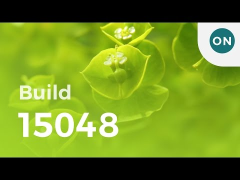 Windows 10 build 15048 and 15047 - Feature Complete