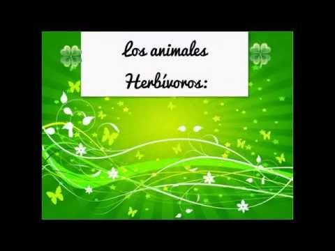Los animales: Herbivoros, Carnivoros y Omnivoros (4°Basico)