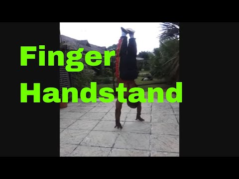 Northern Praying Mantis Finger Handstand:Martial Arts!!! Image 1