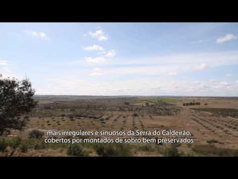 Vila de Almod�var - Musealiza��o do Centro Hist�rico