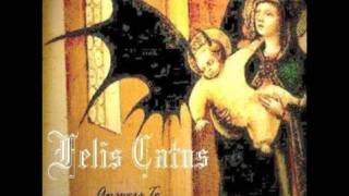 Italian metal: Felis Catus - Through The Centuries