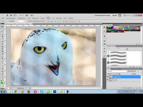 Как сделать яркой фотографию в фотошопе cs5 - Теплостолица