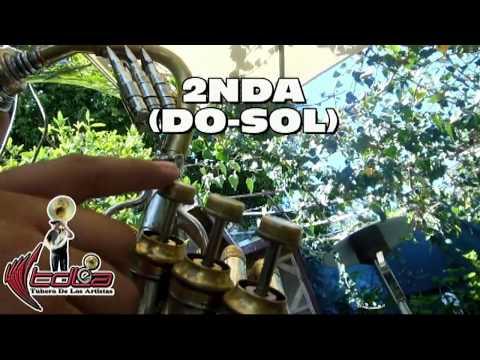 EL RUIDO DE TUS ZAPATOS   Como tocarla en TUBA   Arrolladora Banda El Limon   20