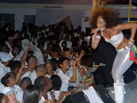 White Fete 2010 Theme Song (Caribbean Snow Storm)