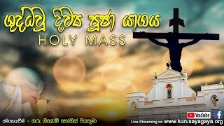 Morning Holy Mass -  29-05-2020