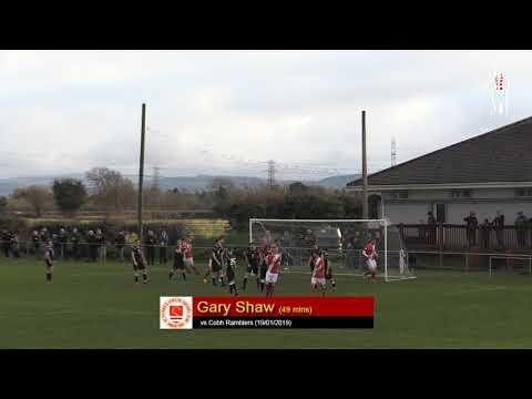 Goal: Gary Shaw (vs Cobh Ramblers 19/01/2019)