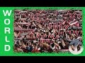Western Sydney Wanderers on Trans World Sport -