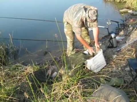 рыбалка в константиновске видео