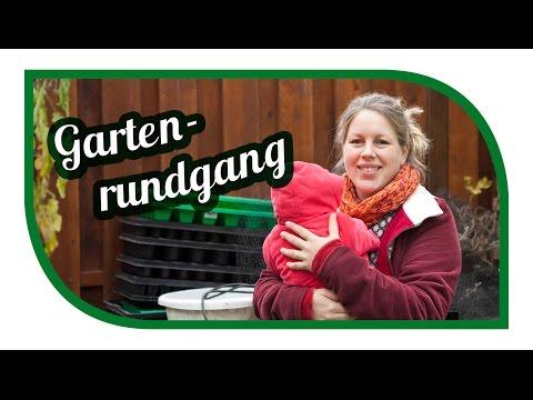 Gartenrundgang November | Kohl im Garten | Hühnerfreilauf | Garden Tour