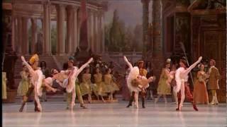 Aurelie Dupont- Sleeping Beauty Ballet - Rose Adagio