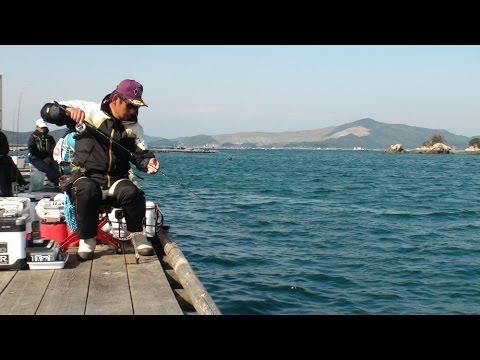 第25回全日本チヌトーナメントin三重県鳥羽・生浦湾
