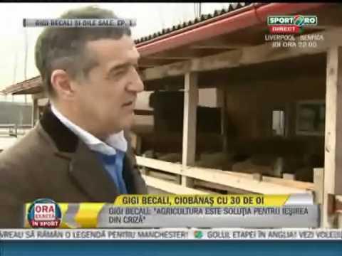 Vezi primul episod din serialul Gigi Becali si oile sale     Sport ro    Video
