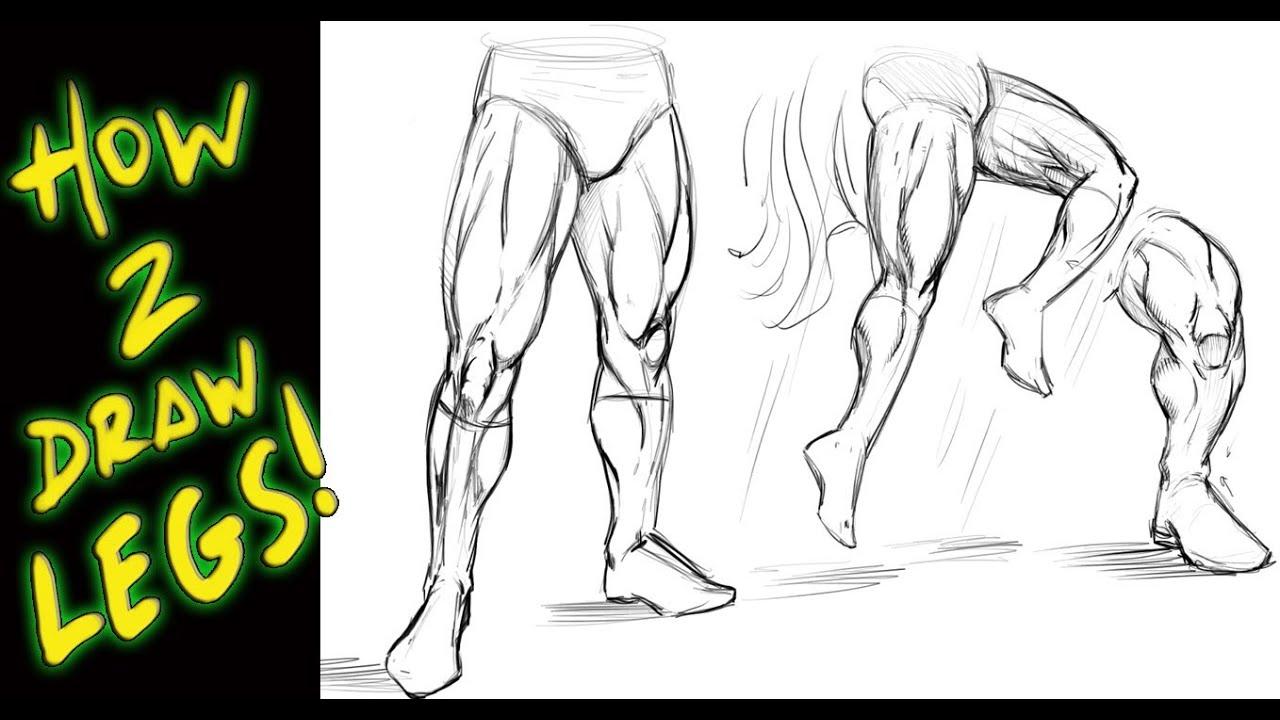 leg muscles drawing - photo #3