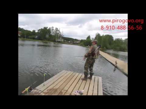 форум платной рыбалки материал получи и распишись ленинградке