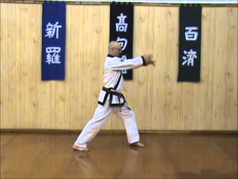 Tang Soo Do - Single Step Drill - Sequence 6 Image 1
