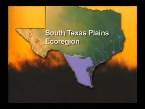 TOH Zone 6 - The South Texas Plains Video 480x320 Video