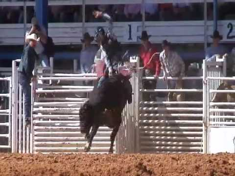 Auto Horse Racing Rodeo Bull Riding on Arcadia Rodeo Bull Riding Mutton Busting Barrel Racing   More