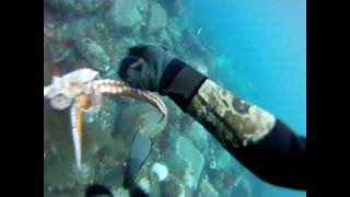 Pesca Submarina - Pulpo - [GoPro HD]