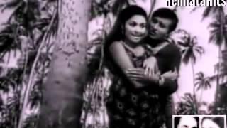 Dil Karne Laga Hai Pyar - Hemlata & Mohd Rafi - Nateeja (1969)