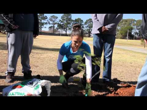 World Environment Day celebrated   Miss Earth South Africa