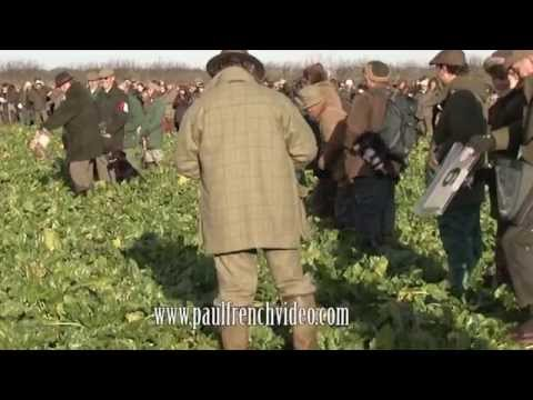 Alvin Parkins Slavery In A Babylon