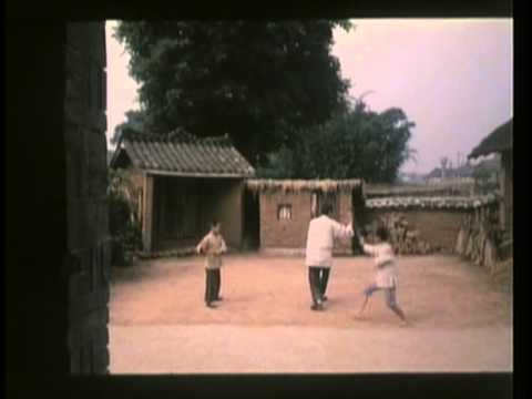 Eight-diagrams Lotus Palm (八卦莲花掌)(1987)