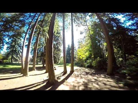 Staying Focused - FPV FREESTYLE - DRONE RACING - LRC RACER