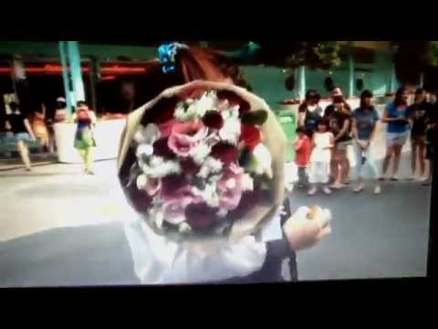 The Gary@Serene Proposal (at Universal Studios Singapore )