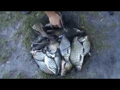 рыбалка в сухорабовке