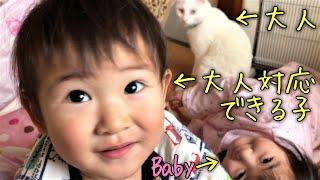 【猫踏んじゃった】神猫&ヒメタツ姉弟、お正月ボケの朝②