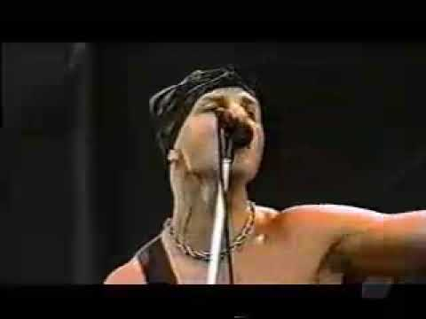 Rancid - Old Friend Live Music Videos