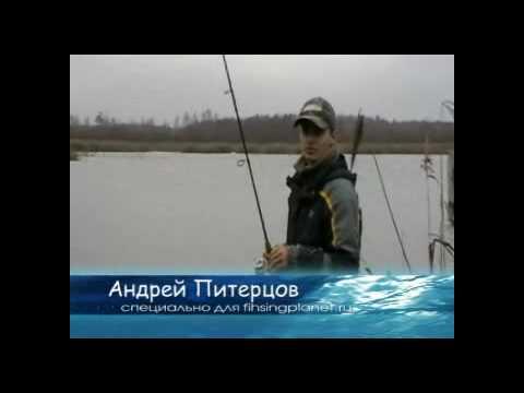 твичинг от питерцова видео