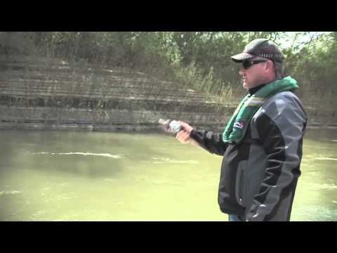 P-LINE Laser Minnow & Pro-Cure on AWTV
