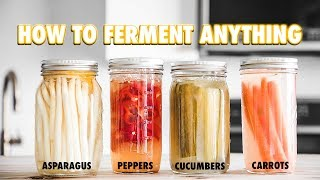 The Guide to Lacto-Fermentation: How To Ferment Nearly Anything