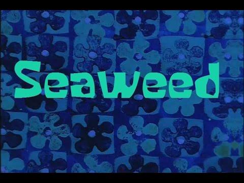 SpongeBob Production Music Seaweed