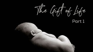 The Gift Of Life, Part 1