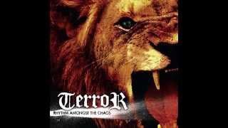 Watch Terror Rhythm Amongst The Chaos video