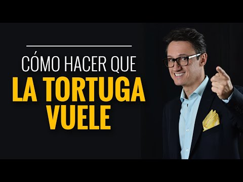 ¿Cómo hacer que la tortuga vuele? / Juan Diego Gómez G.