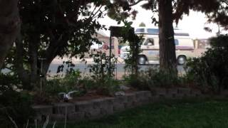 Cool Ice Cream Truck Tune