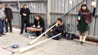 Alphorn and Santur Quartet Street Performance