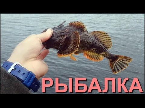 рыбалка на ерша ютуб