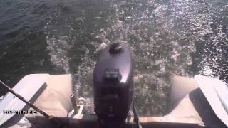 видео лодочного мотора silver t 2.6