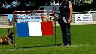 BARON DE VULCAIN finale Ring 2011 à Tavaux, haie