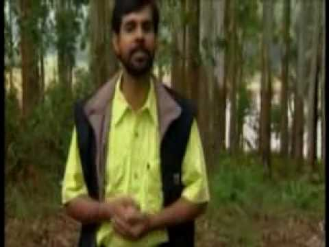 Nin Sneham Ethrayo Avarnaneeyam video